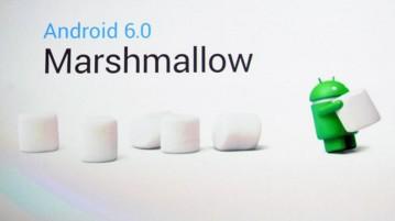 marshmallow 6