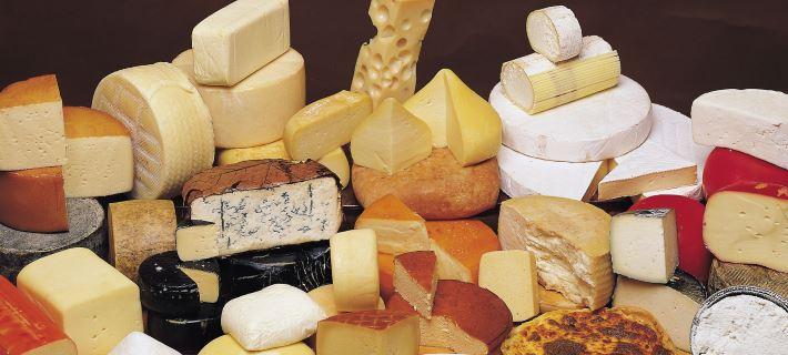 Ποιο τυρί ανακλήθηκε από τον ΕΦΕΤ και γιατί