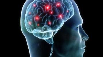 brain-medium